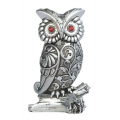 Silver Owl on Branch